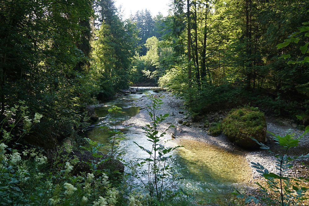 Mal sprudelnd wild, mal friedlich fließt das Wasser durch die Schlucht © Tourist-Info Blaichach