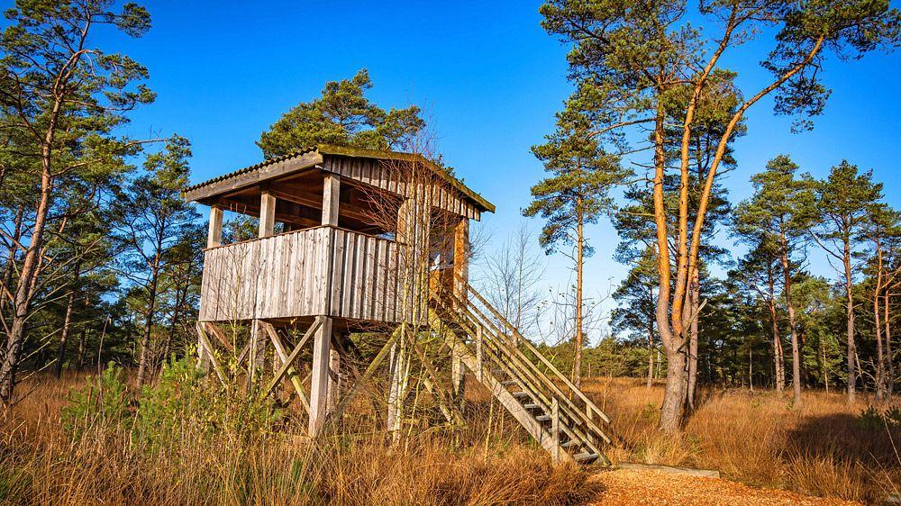 Ein Aussichtsturm im Flachland braucht nicht allzu hoch sein © BjörnWenglerFotografie