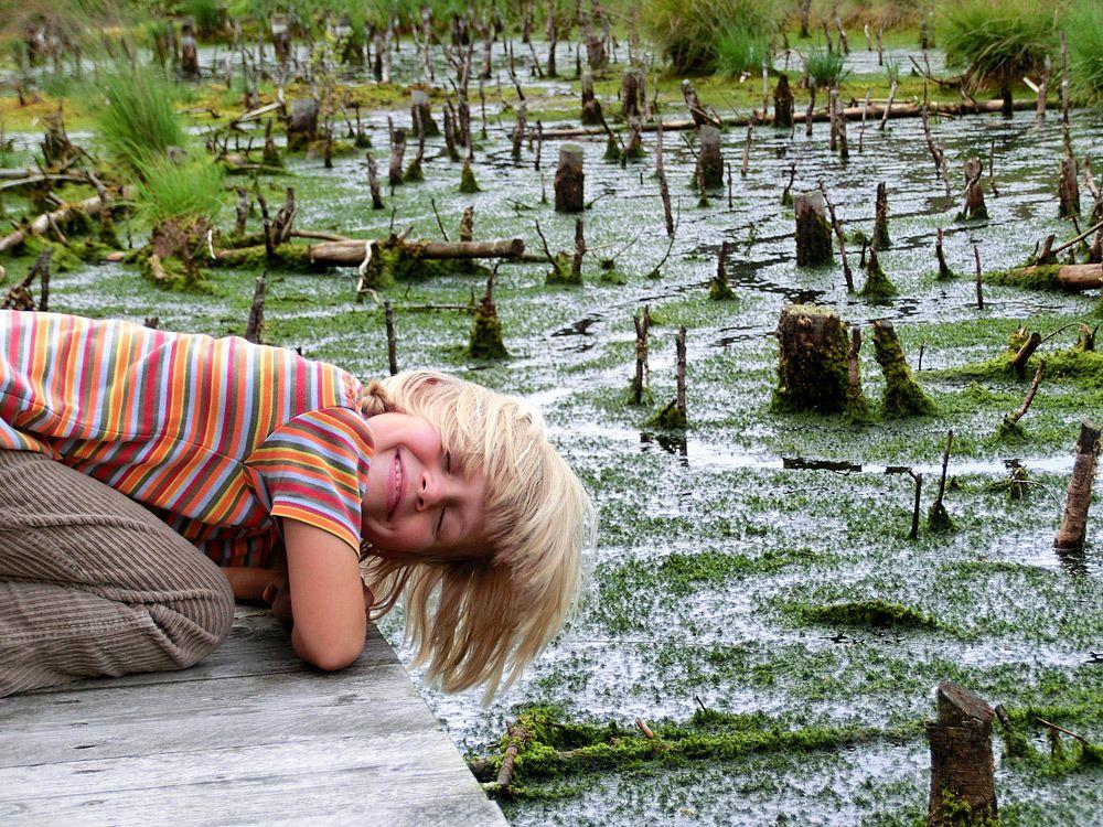 Mit dem Moor auf Tuchfühlung © TouROW Petra Welz