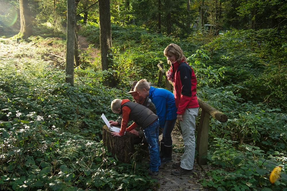 Entdeckungen auf dem Walderlebnispfad © Klaus-Peter Kappest, TVSW