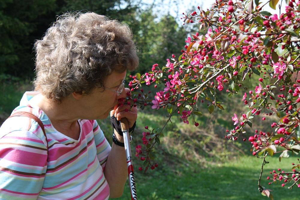 Blütenpracht zum Anfassen © K.H.Rotte