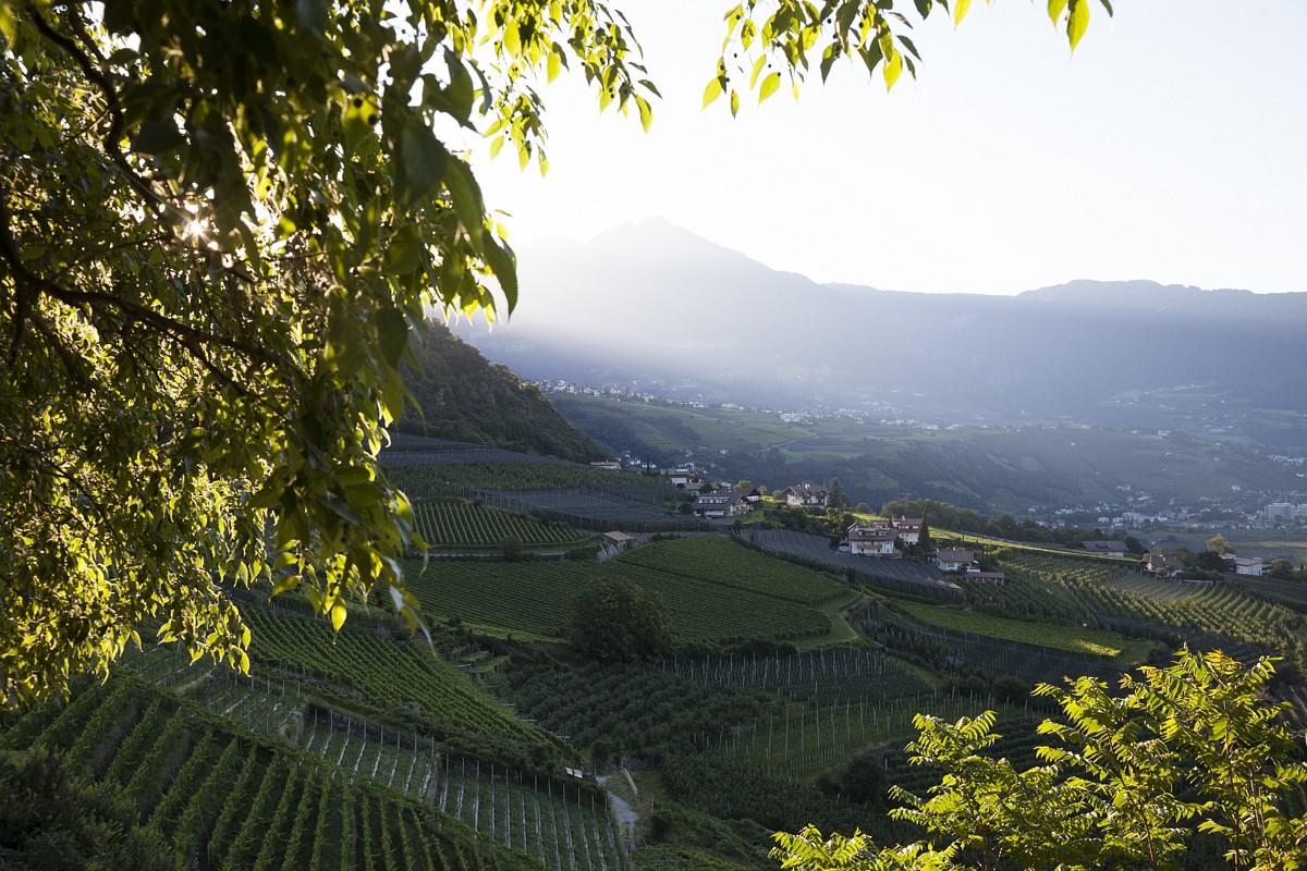 Bei der Stadt Meran in den Südtiroler Alpen ©Alpenjuwelen
