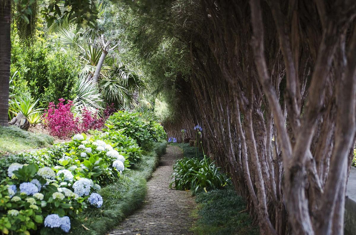 Pflanzenpracht in den Gärten