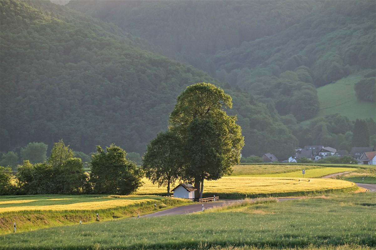 Das Wiedtal liegt mitten im Naturpark Rhein-Westerwald © Touristik Verband Wiedtal