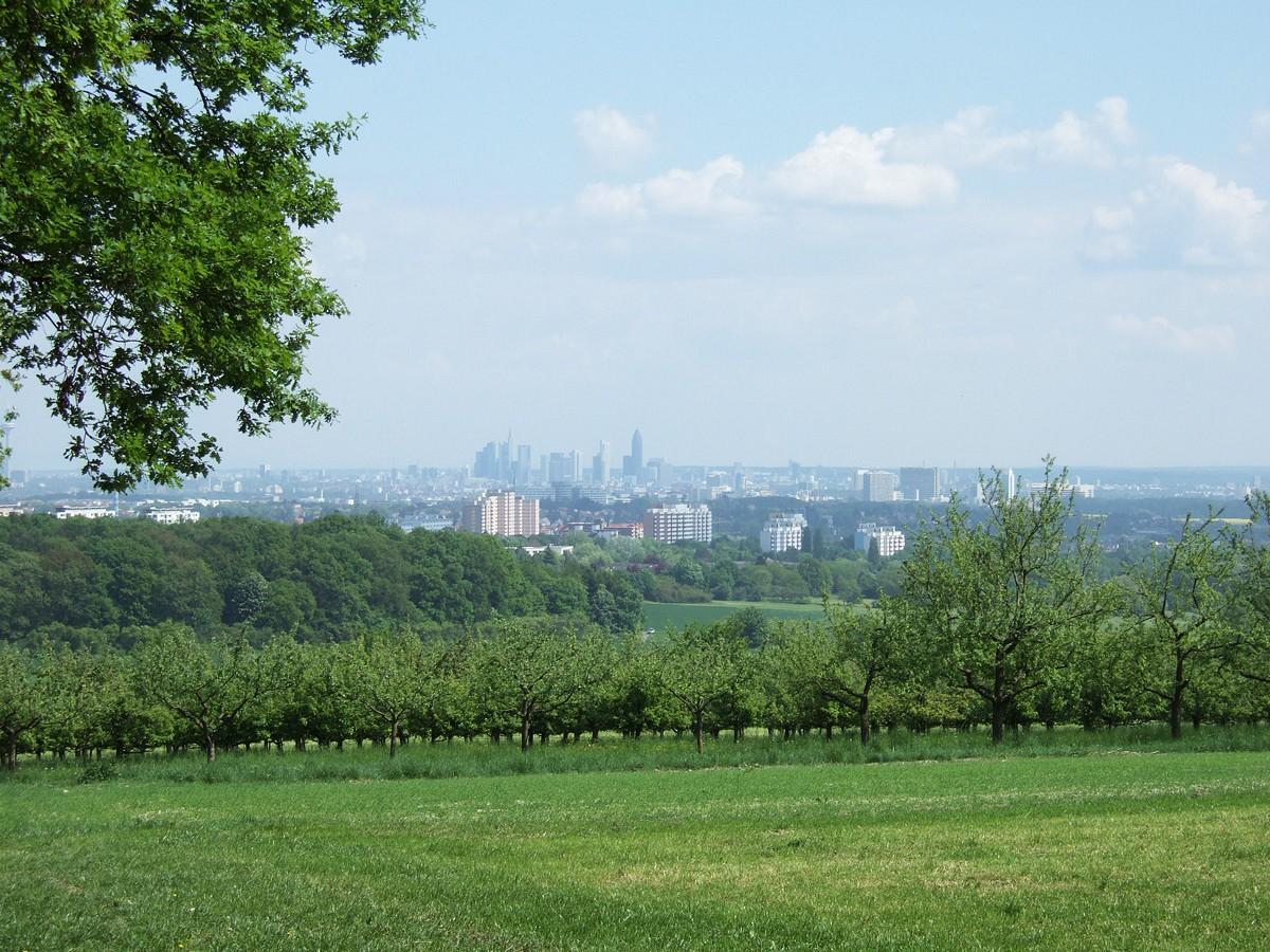Über das Maintal hinweg sieht man die Skyline von Frankfurt