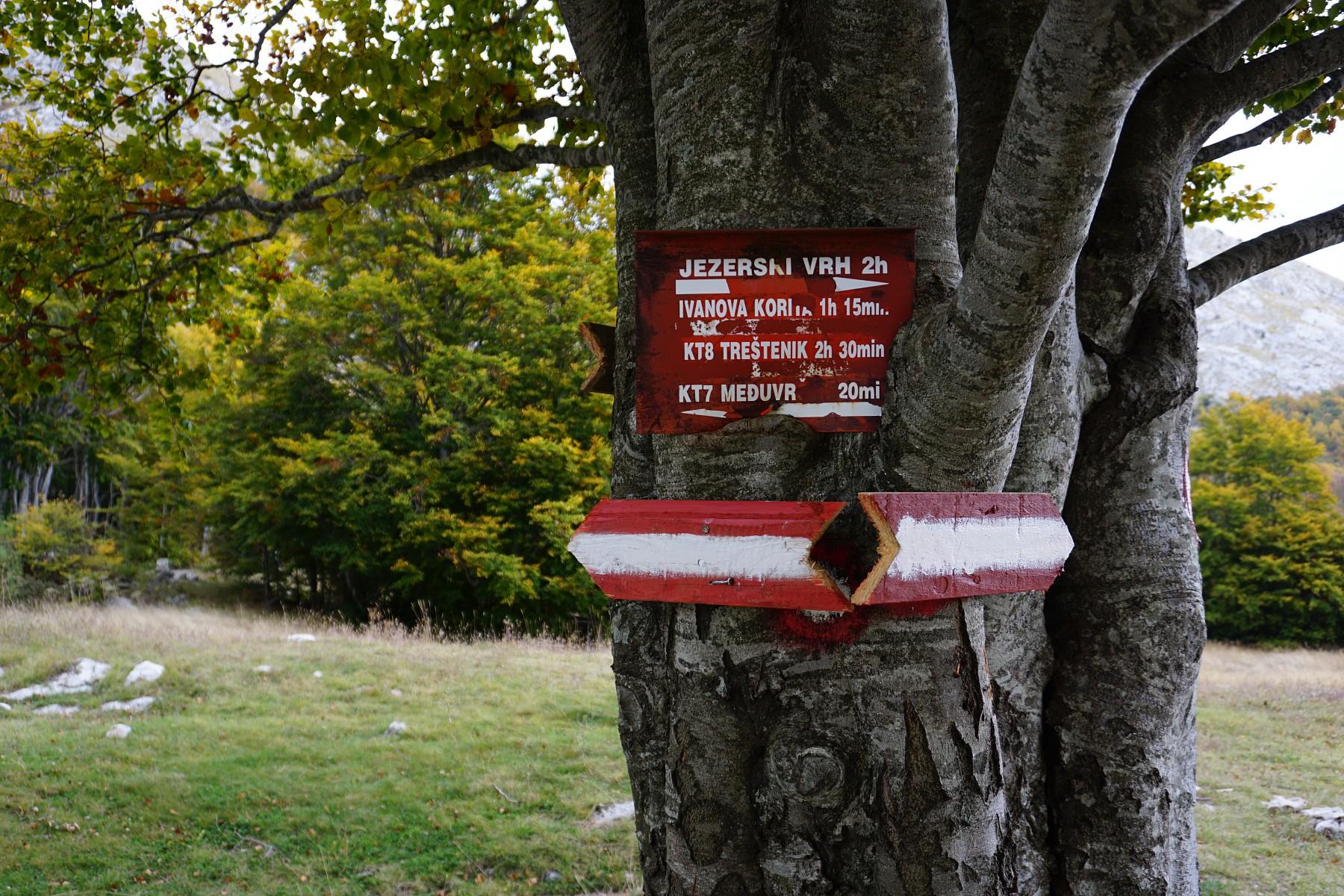 pIch-bin-positiv-uumlberrascht-Die-Markierungen-der-Wanderwege-sind-erstaunlich-gutp