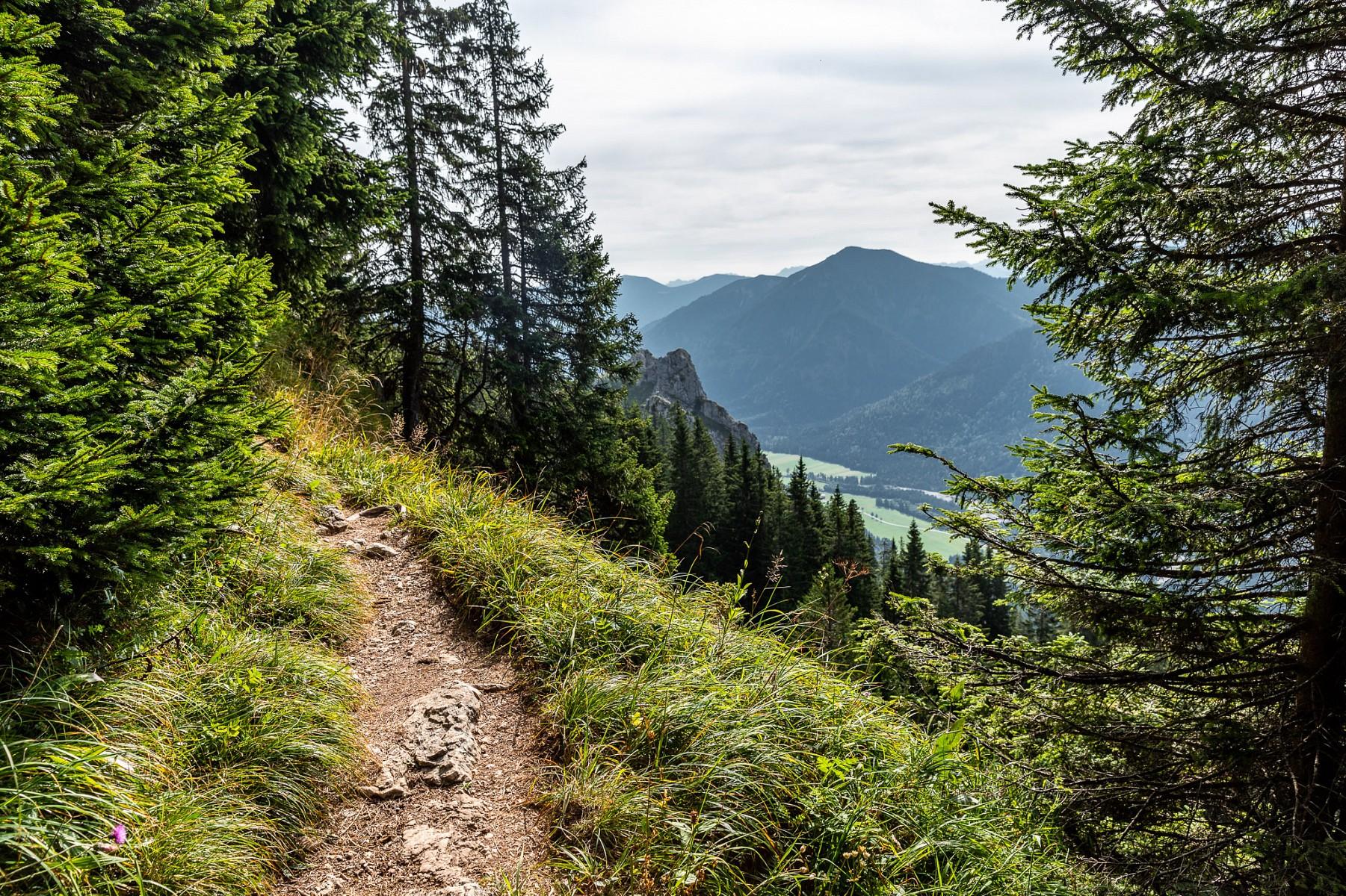 pNach-einer-Etappe-durch-einsame-Waumllder-wandern-wir-nun-ein-Stuumlck-auf-dem-Maximiliansweg-durch-den-NaturparknbspAmmergauer-Alpen-ndash-vom-Schloss-Linderhof-im-Graswangtal-bis-nach-Unterammergaunbspp