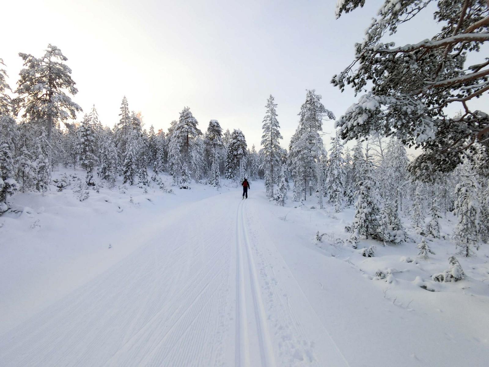 pAm-kaumlltesten-Tag-wagt-Hanna-sich-bei-unter--20degCnbspauf-die-duumlnnen-Skier-doch-beim-Langlauf-in-der-Loipe-wird-es-dann-ziemlich-schnell-warm-und-so-wirdnbspdie-einsame-Gegend-rund-um-das-Skigebiet-Ruka-erkundetp