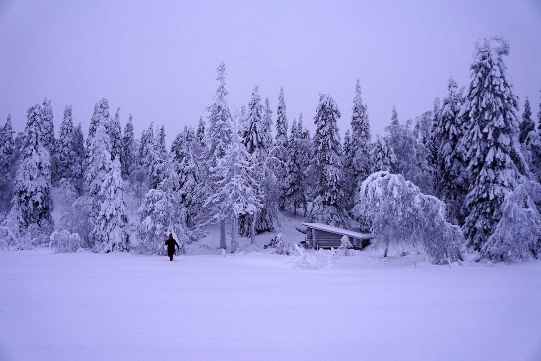 pWeiter-geht-es-uumlberkniehoch-durch-den-Schneenbspden-Wegnbspsuchendnbspin-einer-unwirklich-erscheinenden-Winterlandschaft-bis-zumnbspSee-Suolampnbspmit-Unterstandbr-br-quotDer-perfekte-letzte-Tag-in-Finnlandquotppemspan-stylecolor2980b9Mehr-von-und-uumlber-Hanna-Englernbspaufnbspspana-hrefhttpsverwanderwegencom-targetblankspan-stylecolor2980b9wwwverwanderwegencomspanaemp