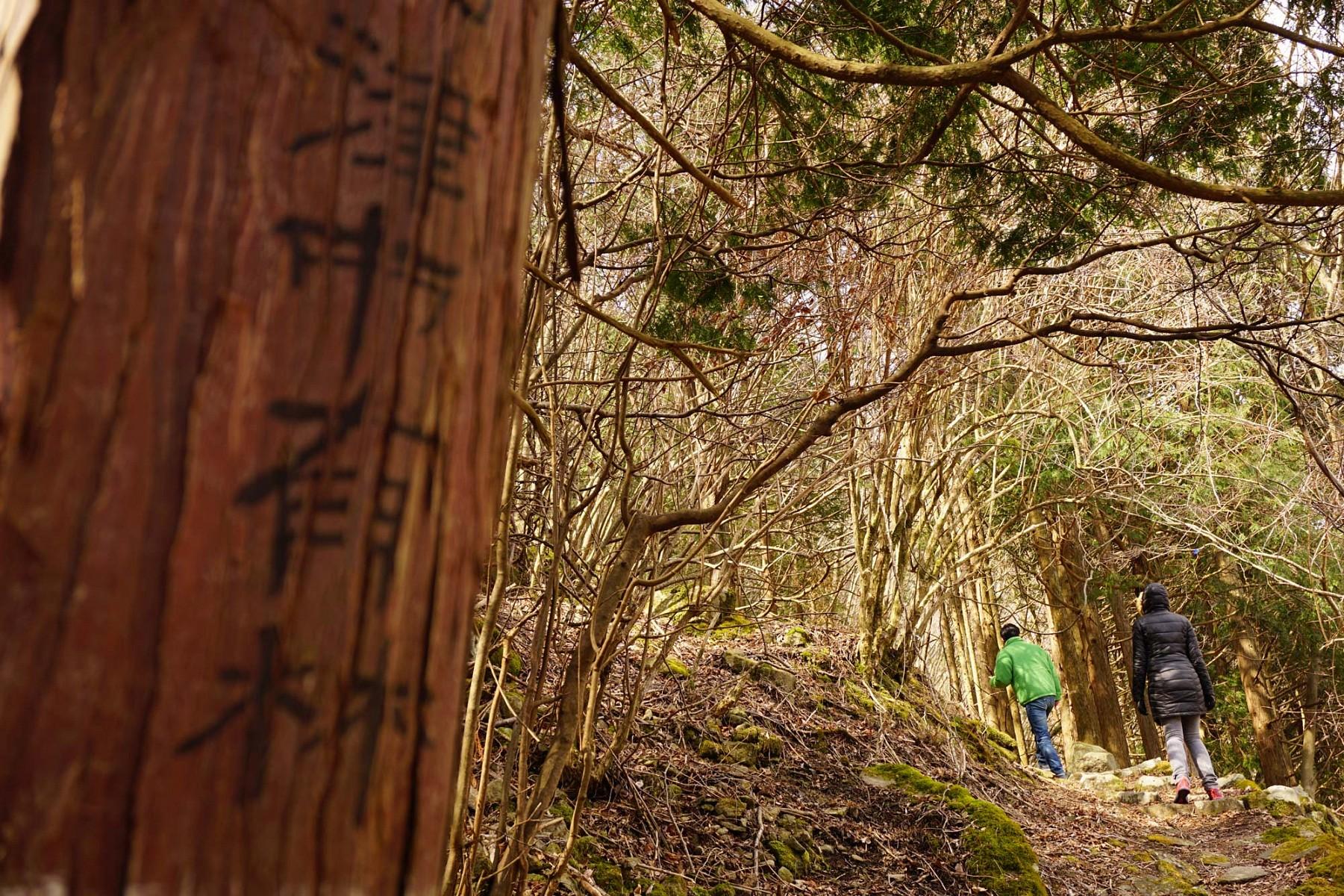 pspan-stylecolornullBeim-Shinrin-Yoku-dem-39Bad-im-Wald39-spielt-das-langsame-bewusste-Gehen-im-Wald-eine-zentrale-Rollespanp
