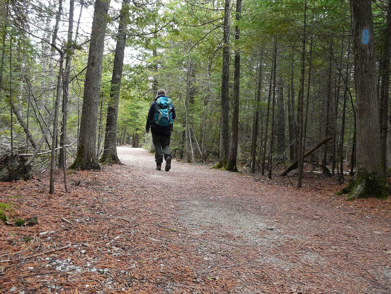 pDer-Bruce-Trail-fuumlhrt-auch-durch-den-Bruce-Peninsula-Nationalpark-bevor-das-Ziel-die-Stadt-Tobermory-erreicht-wird-Hier-sind-einige-Wege-breiter-angelegt-Ein-leichterer-Einstieg-in-dasnbsp156-qm-groszlige-Gebietnbspp