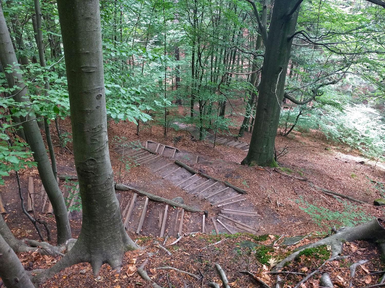 pUnd-so-sieht-ein-Standard-Abstieg-auf-dem-Malerweg-dann-aus-Diese-Stelle-findet-sich-zum-Ende-der-Treppenjagd-auf-Etappe-3-nach-der-Brand-Aussicht-Hier-gilt-es-uumlber-800-Stufen-zu-meistern-Hinweis-Es-geht-auch-uumlber-Stufen-wieder-hoch-nach-Waitzdorf--p
