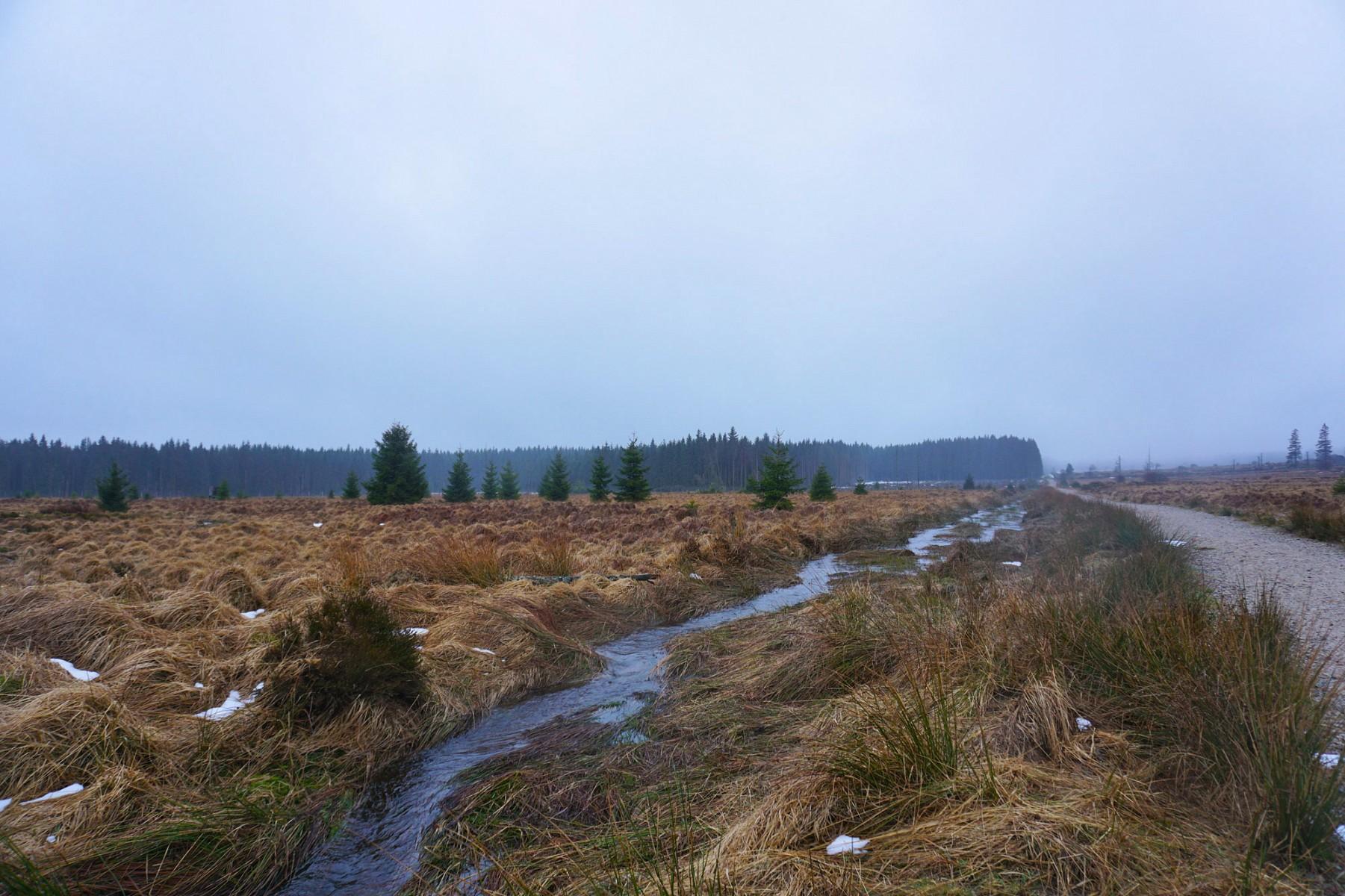 pMeine-Etappe-auf-dem-GR573-startet-mit-einer-3-km-langen-Gerade-Hier-ein-Ruumlckblick-auf-meinen-im-Nebel-liegenden-Startpunkt-Signal-de-Botrange-dennbsphoumlchsten-Punkt-Belgiensp