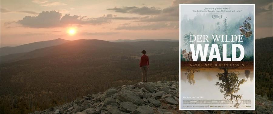 Dokumentationsfilm Wilder Wald