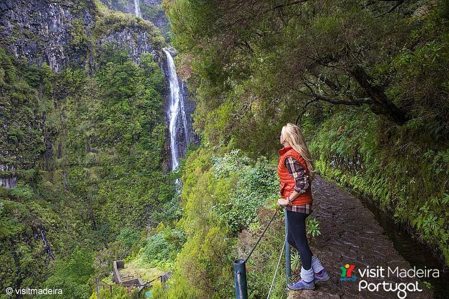 Lorbeerwälder auf Madeira