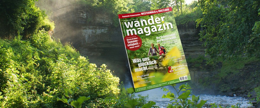 Das Cover der Sommerausgabe